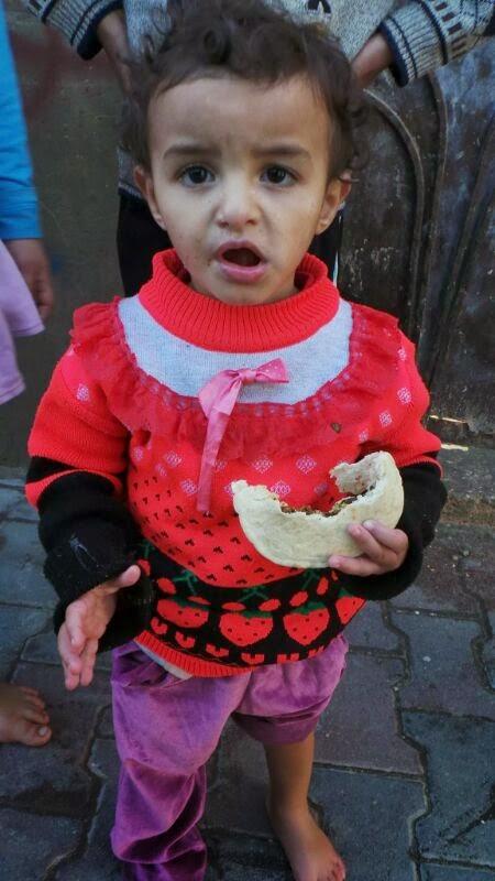 projek bantuan makanan gaza